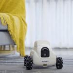 Indiegogo'da 149 $ (1.092,90 Türk Lirası) 'lık Cazip Başlangıç Fiyatıyla Evcil Hayvanlar İçin Pumpkii Modüler Robot!