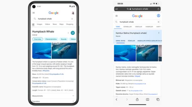 Google Arama Tasarımı Değiştiriliyor! 2021
